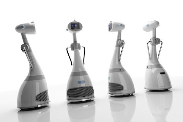 RoboDynamics Luna Personal Robot