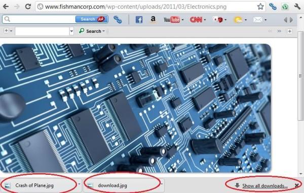 Google Download Bar, Image Credit : Screen Shot