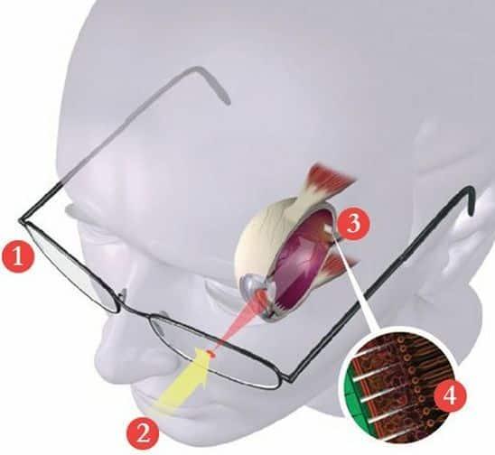 Laser Powered Bionic Eye, Image credit: PopSci