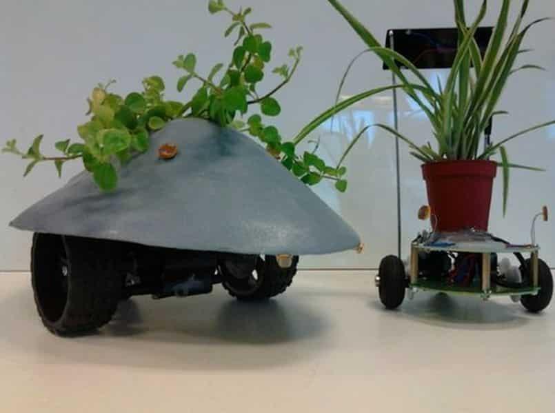 Plant Host Drone, Image Credit : Stephen Verstraete