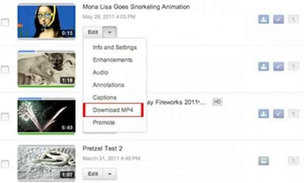 Download Individual MP4 Video