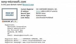 Microsoft Owns Microsoft-Sony.com