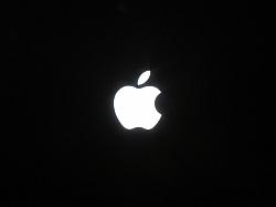 Apples Sales Will Cross 116 Million iPhone, 55 Million iPad In 2012