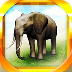 REAL ANIMALS HD(Full) –  Premium Fun Educational App For iOS[FREE]