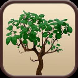 Family Trees – Premium Genealogy App For iOS [Free]
