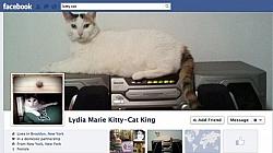 83 Million Facebook Accounts Are Fake