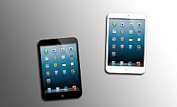 iPad Mini Prototype And Leather Case Surfaces