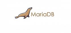 MySQL Team Gets Together For A New Project, MariaDB