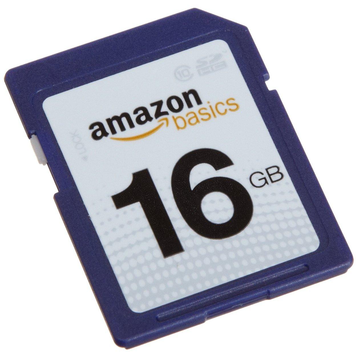 https://thetechjournal.com/wp-content/uploads/images/1109/1317180381-amazonbasics-16-gb-class-10-sdhc-flash-memory-card-1.jpg