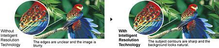 https://thetechjournal.com/wp-content/uploads/images/1203/1332165981-panasonic-hdcsd80k-hd-sd-card-camcorder--6.jpg