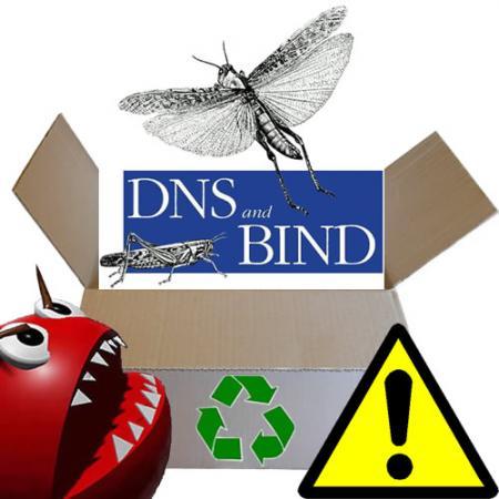 Critical Vulnerability In BIND DNS